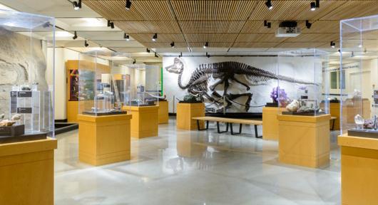 museum-clean-polished-concrete